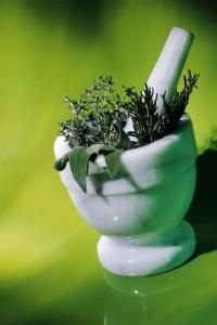 צמחי מרפא